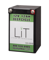 Lithium Ion Technologies